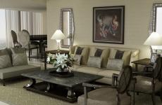 5 star Living & dining designs (18)