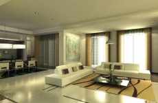 5 star Living & dining designs (26)