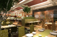 5 star Restaurant designs (22)