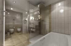 five star Washrooms (6)